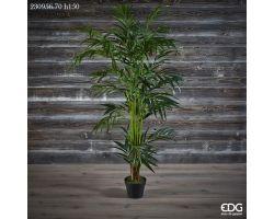 Pianta Palma ARECA con vaso H 150 cm 230956.70