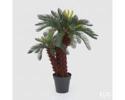 Pianta Palma CYCAS CHIC con vaso H 100 cm 231595.86