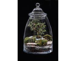 Bonsai in vetro Ø23xH38 cm FLOR MAISON Cindy EDEN 002