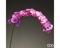 Ramo Orchidea Fall Bell 11 fiori 212716