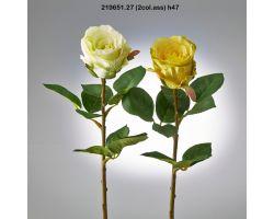 ROSA REX H 47 COLORE MISTO 219651.27